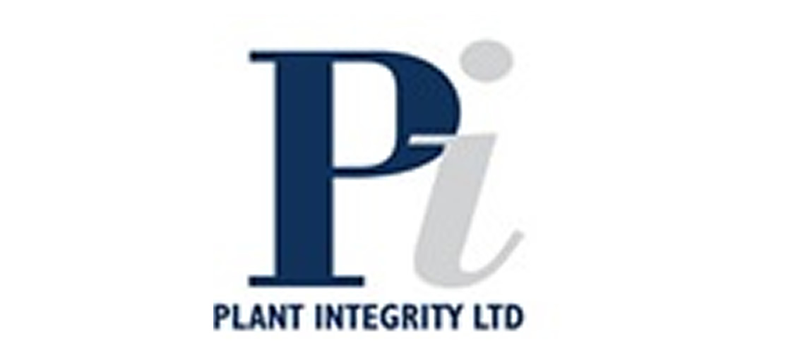 Plant Integrity  Jobs in Al Madinah